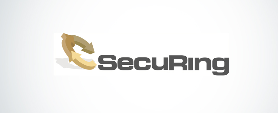 securing_artykul
