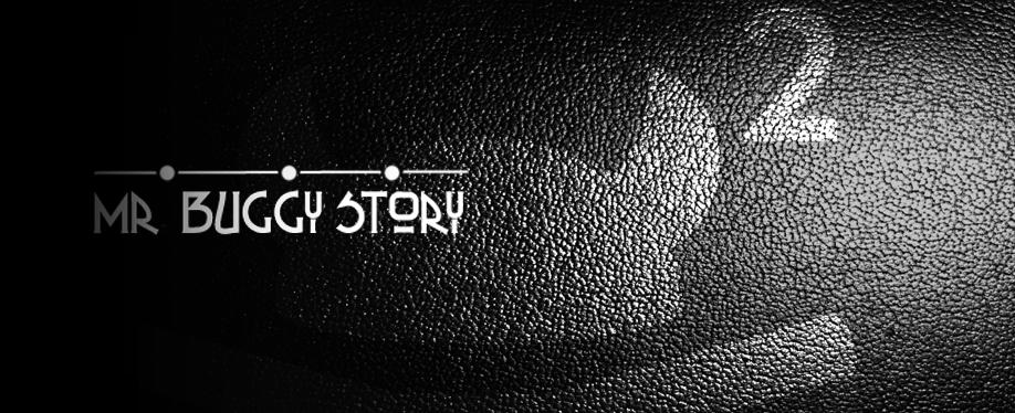 buggy_story_tc